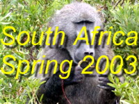 Do come and see all the wild-life, flowers and wild-nature from our trip to South-Africa during Nov/Dec 2003 (Springtime in South Africa)